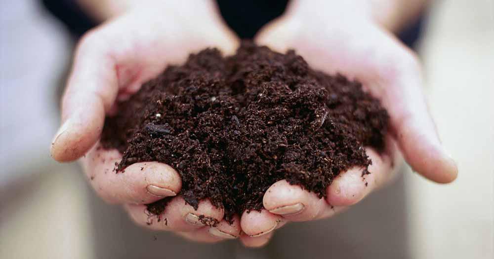 phân loại đất trồng bằng kiểm tra đất bằng lọ, giấy bút và muối ăn