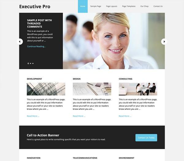 theme wordpress doanh nghiệp